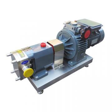 REXROTH PVV5-1X/162RA15DMB Vane pump