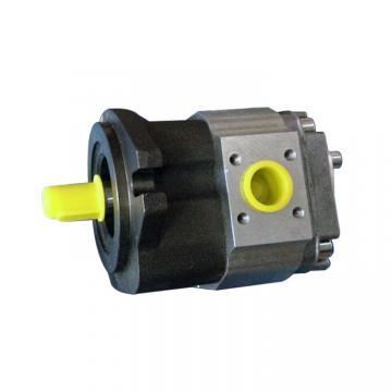 Vickers PV080R1L1K3NUPE+PV046R1L1AYNUP Piston Pump PV Series